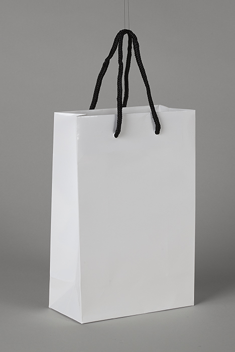 Plain White Luxury Paper Bag
